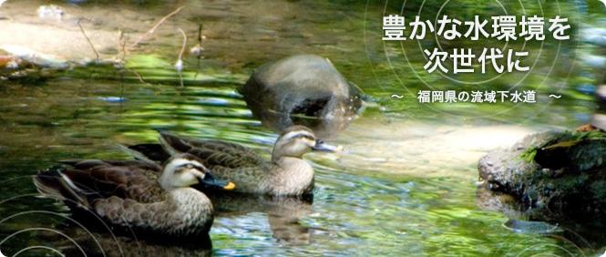 豊かな水環境を次世代に〜福岡県の流域下水道〜 生きもの