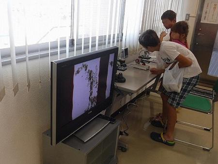 顕微鏡コーナー